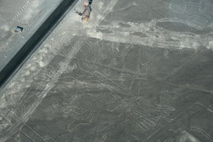 tree-of-life-nazca1