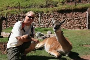 dan-and-llama