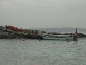Isla Damas 8