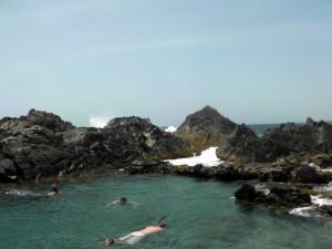 natural pool 2